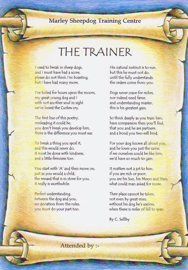 the_trainer